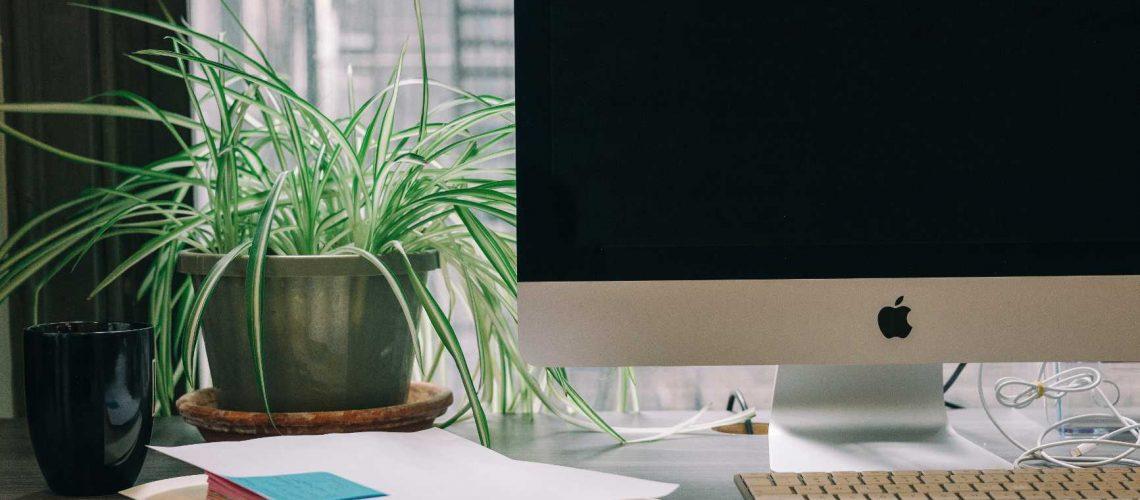 benefici-piante-ambiente-lavoro