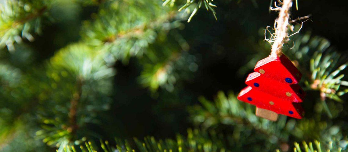come-addobbare-albero-natale-alpaflor